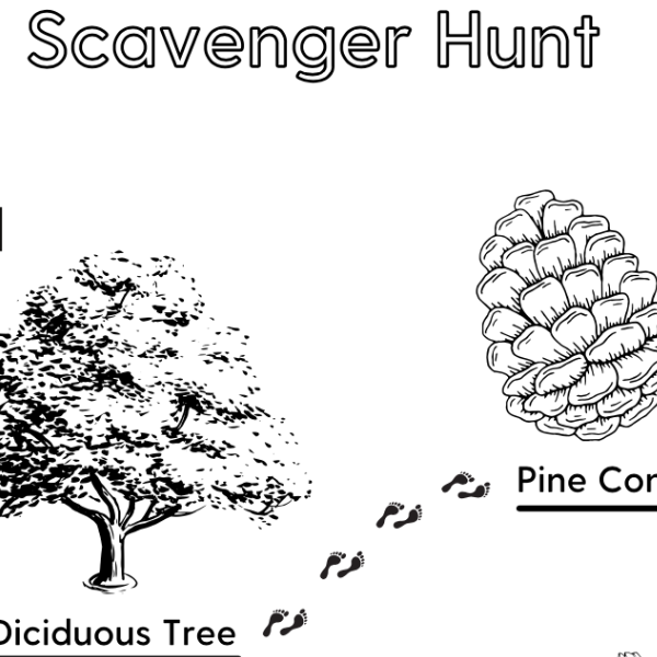 Earth Day Scavenger Hunt (Free Printable)